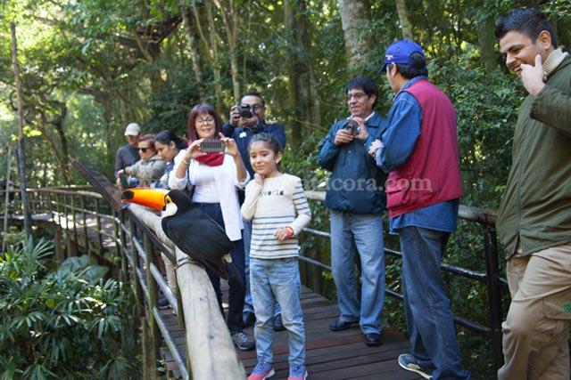 Parque de Aves lado Brasil con Catacora Tour SRL